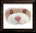 Teddy Gesicht