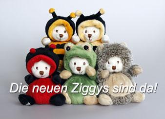 Ziggy Teddybär Neu