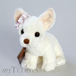 Baby Dennis Hund