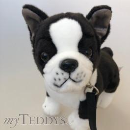 Plüschtier Hund Französische Bulldogge
