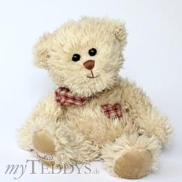 Lilla Björn Teddybär