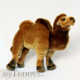 Plüschtier Kamel