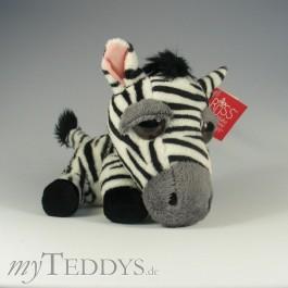 Zebra Stripes Medium