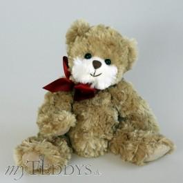 Sweet Olinek Teddybär