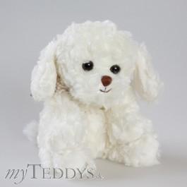 Westus Hund