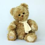 Ceasar Teddybär