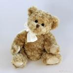 Daniel 1 Teddybär
