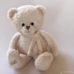 Gio Teddybär