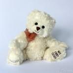Teddy - My first teddy