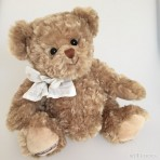 Ted Teddybär